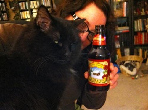 Comfortcat2_blog